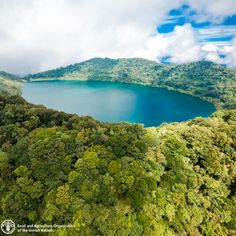 【unfao】さんのInstagramをピンしています。 《Vulcan Ipala, in Guatemala, surrounded by a forest. Forests are among the most important repositories of terrestrial biological diversity. Together, tropical, temperate and boreal forests offer very diverse habitats for plants, animals and micro-organisms. Biological diversity is the basis for a wide array of goods and services provided by forests. The variety of forest trees and shrubs play a vital role in the daily life of rural communities in many areas, as…