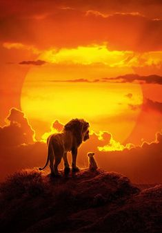 Visit the official website for Disney's The Lion King, starring Donald Glover and Beyoncé. Watch the trailer, find out more and book tickets. Watch The Lion King, Lion King 2, Lion King Movie, Disney Lion King, Lion King Poster, Lion King Video, Images Roi Lion, Lion King Pictures, Pride Rock