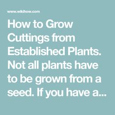 How to Grow Cuttings from Established Plants. Not all plants have to be grown from a seed. If you have an existing plant that you like, you can grow a new plant from one of its branches. Growing a plant from a cutting will take a couple of...