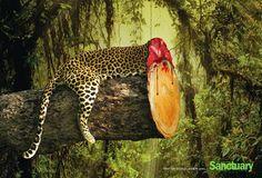 """""""Quando spariscono le piante, spariscono gli animali"""". Una campagna dal forte impatto emotivo contro la deforestazione. Un pericolo per l'uomo, ma anche per gli animali che predono il loro habitat naturale."""