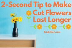 Use this 2 second trick to increase the lifespan of fresh cut flowers.