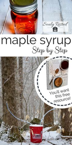 How to Make Maple Syrup step-by-step Maple Syrup Tree, How To Make Syrup, Homemade Syrup, Sugaring, Homestead Survival, Survival Prepping, Wild Edibles, Natural Sugar, Farm Gardens