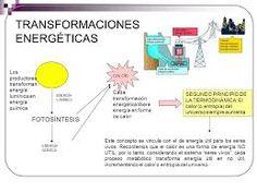 Resultado de imagen para transformaciones de materia y energía en los seres vivos