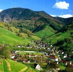 The Black Forest, southern Germany.