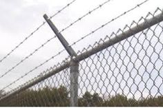 Image result for barbed wire fence top