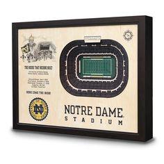 Notre Dame Stadium 3D View Wall Art