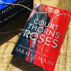 V Family Fun: Book Review - A Court of Thorns and Roses by Sarah...