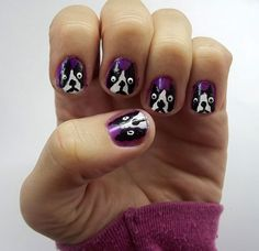 Boston Terrier Nails...awesome