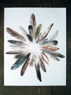 Love this idea ~ Have found feathers each day in my fathers backyard while gardening...I have picked them all up each day, as if his spirit is with me...what a wonderful way to display them.