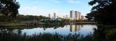 Roppongi, Tsukiji, Tour Eiffel, New York Skyline, Travel, Small Bbq, Suspension Bridge, Ferris Wheel, Viajes