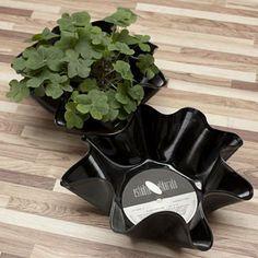 Um disco de vinil danificado pode virar um cachepô para suas plantas #DECORAÇÃO