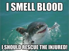 Misunderstood shark! Thanks for helping!