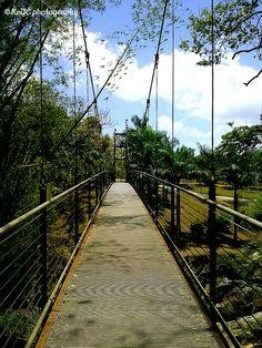 Jardín Botánico,Caguas