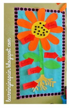 Spring brings flowers to the classroom! - Learning in Spain