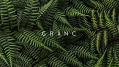 A new brand for an organization of professionals related to environmental sciences. GRINC researches, develops and implements programs to extend the cultivation of native species.The challenge centered in brand definitions, brand architecture and graphi…