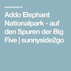 Addo Elephant Nationalpark - auf den Spuren der Big Five | sunnyside2go