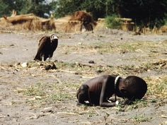 Kevin Carter photograph, Sudan. Vulture stalking a starving child.  1993,