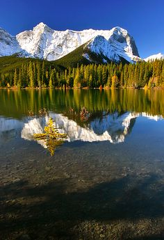 Upper Kananaskis Lake is a natural lake that was turned into a reservoir in Kananaskis Country in Alberta, Canada.   Indian Summer by photographer:  Majo Srnik