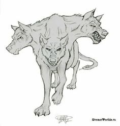 Cerberus Weird Creatures, Magical Creatures, Fantasy Creatures, Animal Sketches, Animal Drawings, Tattoo Perro, Character Inspiration, Character Design, Arte Horror