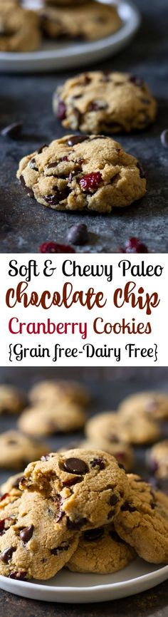 Soft and chewy paleo chocolate chip cranberry cookies that you won't believe are healthy! Grain free, dairy free, Paleo and very easy to make