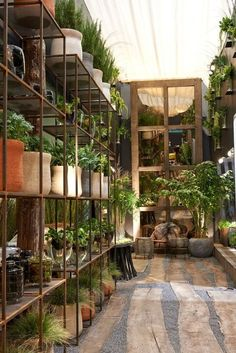 Vertical Gardens Vertical gardens come in many shapes, sizes and configurations. Some vertical gardens are designed to hang on a wall like living art, while others are freestanding gardens that feature rows of growing shelves stacked on top of each other Garden Nursery, Plant Nursery, Vertical Garden Design, Vertical Gardens, Vertical Planter, Jardim Vertical Diy, Patio Deck Designs, Cozy Backyard, Greenhouse Plans
