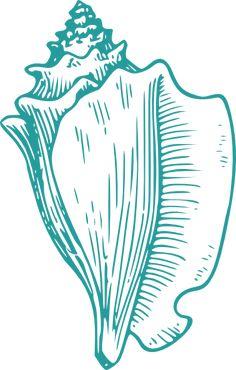 conch teal clip art at clkercom vector clip art online royalty