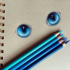 Image via We Heart It https://weheartit.com/entry/165814566 #art #blue #blueeyes #cat #draw #eyes #look