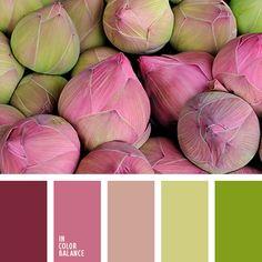 color palette - color scheme - branding ideas