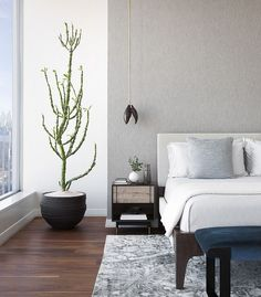 Adding indoor plants to neutral, contemporary bedroom