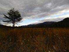 Cade's Cove, Great Smoky Mountains National Park