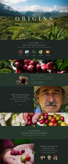 The Origins Website Design