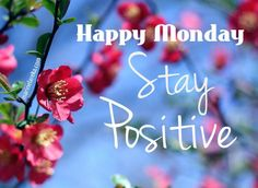 Happy Monday Stay Positive monday monday quotes happy monday monday quote happy monday quotes