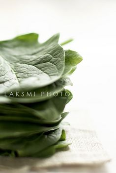 Spinach | Flickr - Photo Sharing!