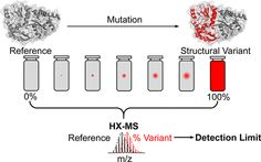 [ASAP] A Structural Variant Approach for Establishing a Detection Limit in Differential Hydrogen Exchange-Mass Spectrometry Measurements