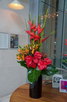 sydney flowers | Flowers of Sydney