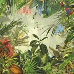 Komar - Papier Peint Photo Intissé - Jungle et Animaux - 368x248cm