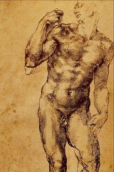 studio_duomo_nudo_-_michelangelo_buonarroti.png 1.024 ×1.536 pixel