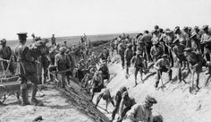 Men of a Highland battalion digging a drainage channel through the Daubratali Marshes to help destroy the area as a breeding ground of malaria carrying mosquitoes. Drainage Channel, British Army, The Past, Campaign, History, Concert, Outdoor, Historia, Outdoors