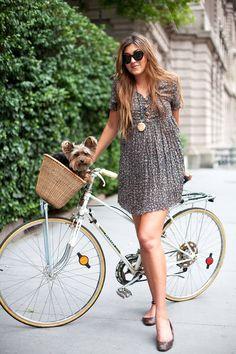 #bike #velo #basket #panier #animaux #chien #dutchbike