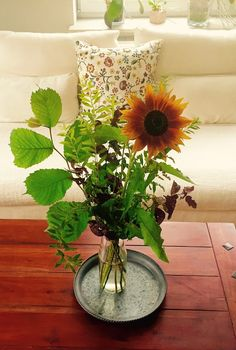 Sunnys Haus: Friday Flowerday - verregnete Sonnenblume