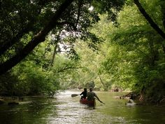 Canoeing on the Shenandoah River  Photograph by Greg Dale