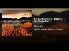 Not One Sparrow is Forgotten (arr. W. Hawley) - YouTube