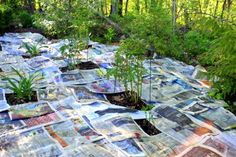 Heavily newspaper your garden beds before you put down mulch. Weeds cannot grow through the newspaper, and the decomposing paper feeds your soil.