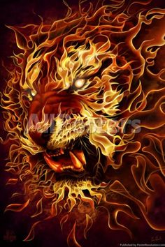 Tiger Fire Tom Wood Fantasy Art Poster 2436 inch - Fantasy Poster - Ideas of Fantasy Poster Lion Live Wallpaper, Tiger Wallpaper, Animal Wallpaper, Striped Wallpaper, Wallpaper Art, Tiger Artwork, Tiger Painting, Air Brush Painting, Phoenix Painting