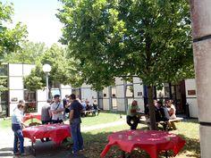 La garden party de #Prologue sous le soleil