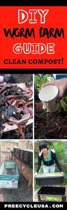 DIY Worm Farm GUIDE