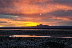 Um Oásis No Atacama – Revista Habitare