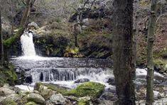 Senda La Regueirina (Occidente de Asturias) entre La Espina y Tineo Paraiso Natural, Campervan, Waterfall, Spain, Outdoor, Angela, Twitter, Nature Activities, Hiking Trails