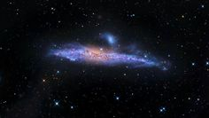 Star Streams in the Whale Galaxy