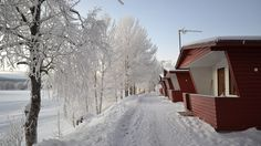 Napapiirin Saarituvat is situated along the beautiful river Kemijoki, 7 km from Rovaniemi. We offer self-catering accommodation in cosy and tiny red cottages. Lapland Finland, Red Cottage, Cottages, Cosy, Outdoor, Beautiful, Outdoors, Cabins, French Country Cottage